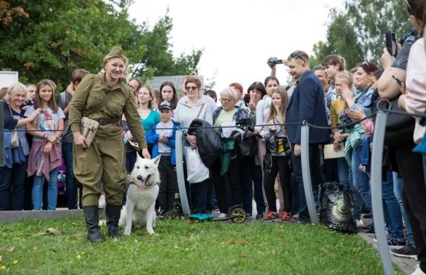 Более 5 тысяч человек посетили День фронтовой собаки в Музее Победы