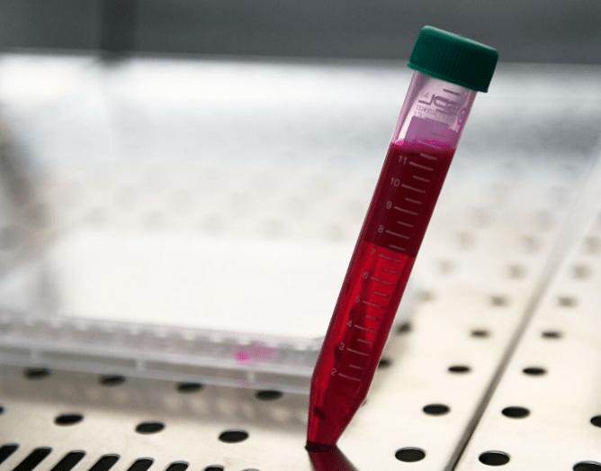 В России вакцинация от коронавируса будет добровольной