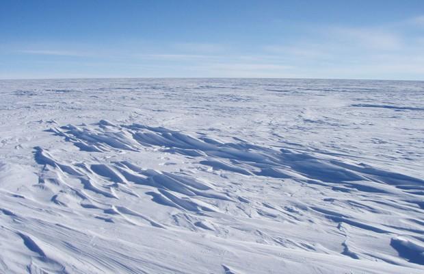 По данным ученых в Беринговом море скоро исчезнет лед